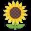 image for :sunflower:
